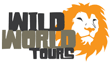 Wild World Tours